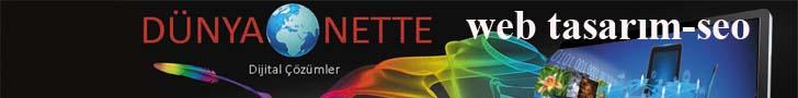 www.dunyanette.com